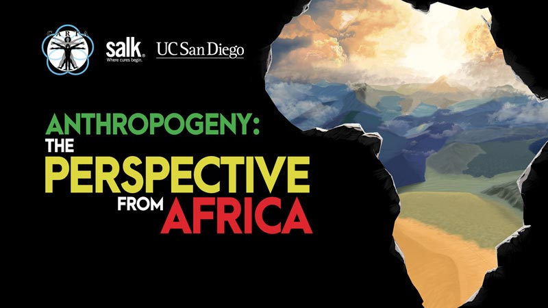 Anthropogeny: The Perspective from Africa