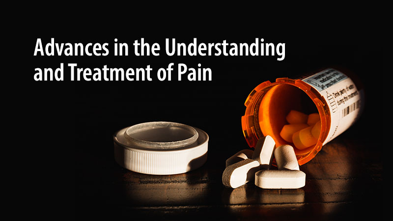 Everybody Hurts: How We Understand and Treat Pain and Addiction