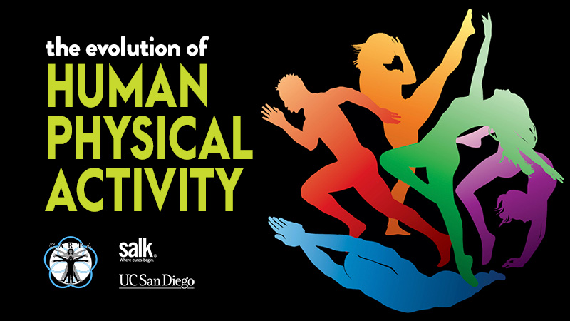CARTA: The Evolution of Human Physical Activity