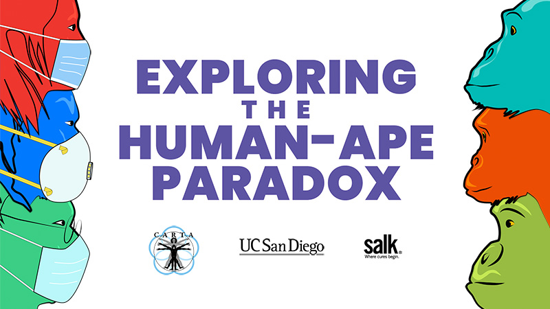 CARTA - Comparative Anthropogeny - Exploring The Human-Ape Paradox