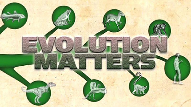 Evolution Matters