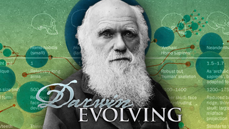 Darwin Evolving