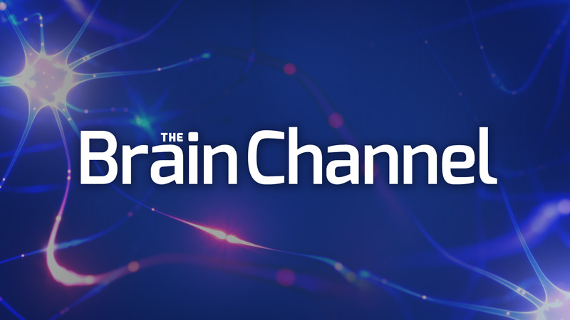 The Brain Channel