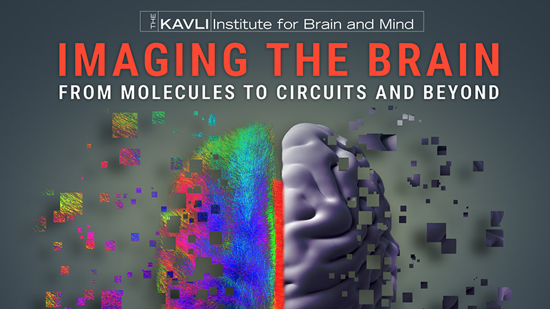 Kavli Institute for Brain and Mind: Imaging the Brain, from Molecules to Circuits and Beyond