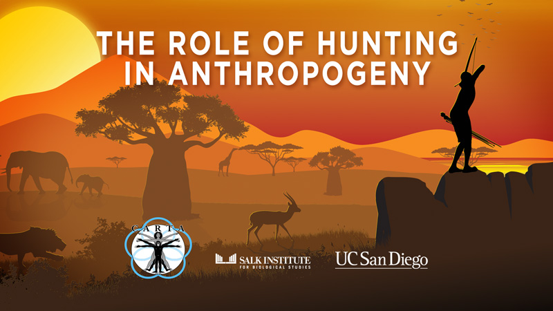 CARTA: The Role of Hunting in Anthropogeny