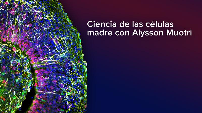 Ciencia de las células madre con Alysson Muotri