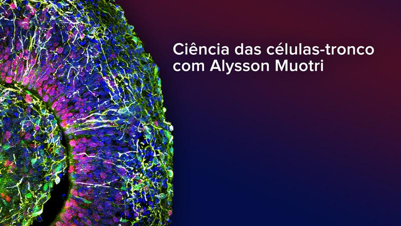 Ciência das células-tronco com Alysson Muotri