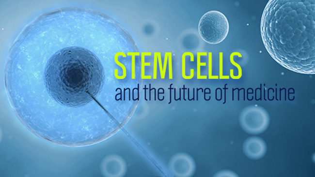 future posibilites of stem cell research The cons of stem cell research are the use of stem cells and the ethical issues associated with using embryos to harvest cells for research another disadvantage of stem cell research is the idea that we as humans are on the verge of playing god by creating life.