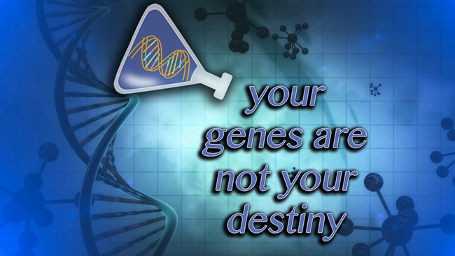 your genes are not your destiny Contrary to popular belief, your genes don't necessarily determine your destiny while many genes are static and determine our sex, eye and skin color, oth.