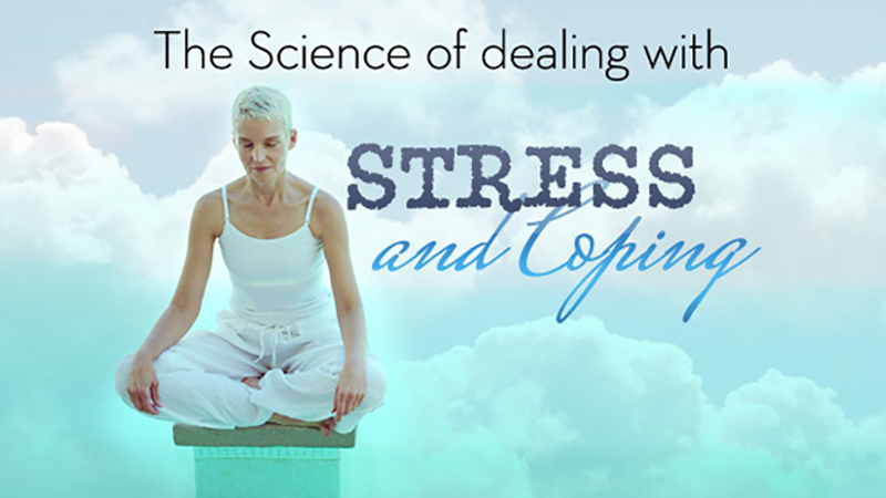 The State of the Science in Stress and Coping