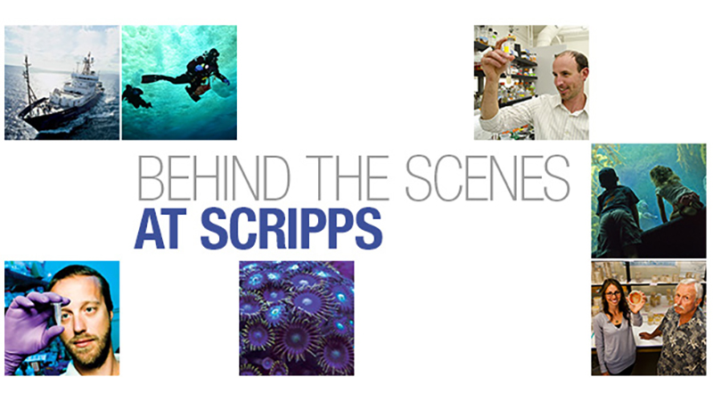 Behind the Scenes at Scripps