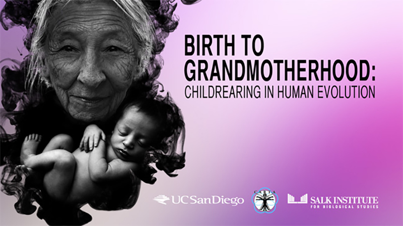 CARTA - Birth to Grandmotherhood: Childrearing in Human Evolution