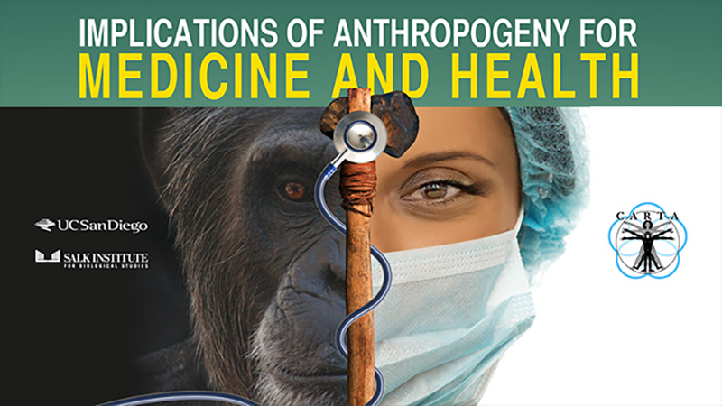 Implications of Anthropogeny for Medicine and Public Health