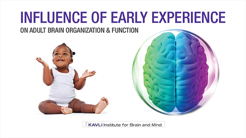 Influence of Early Experience on Adult Brain Organization and Function - Kavli Institute for Brain and Mind Symposium